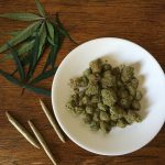 cannabis buds on white plate