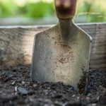 garden spade in soil