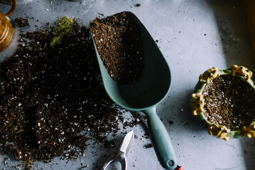 trowel with soil