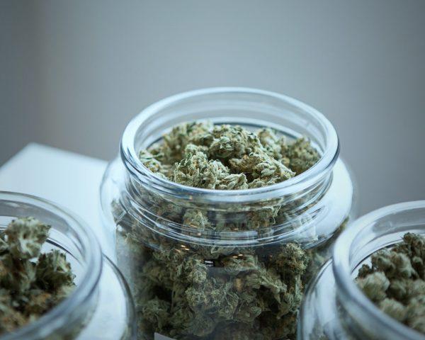 weed buds in jars