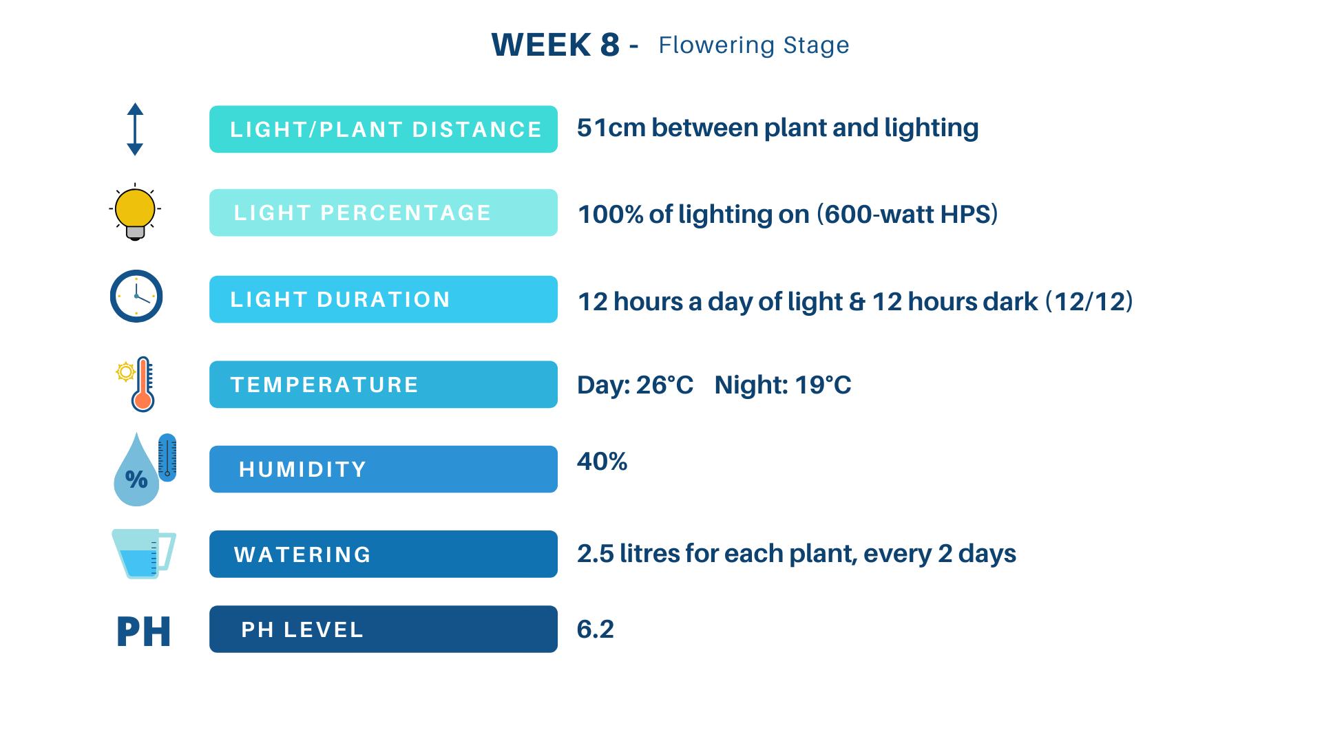 Grow schedule week 8 flowering stage