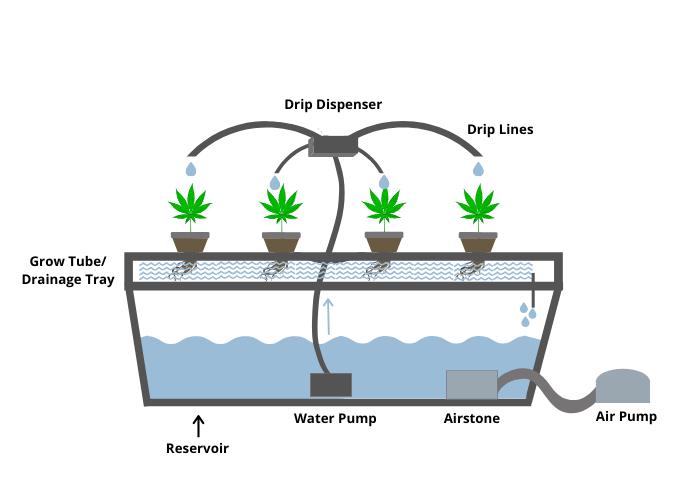 Hydroponic Drip Systems