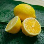 lemon slices on green leaf