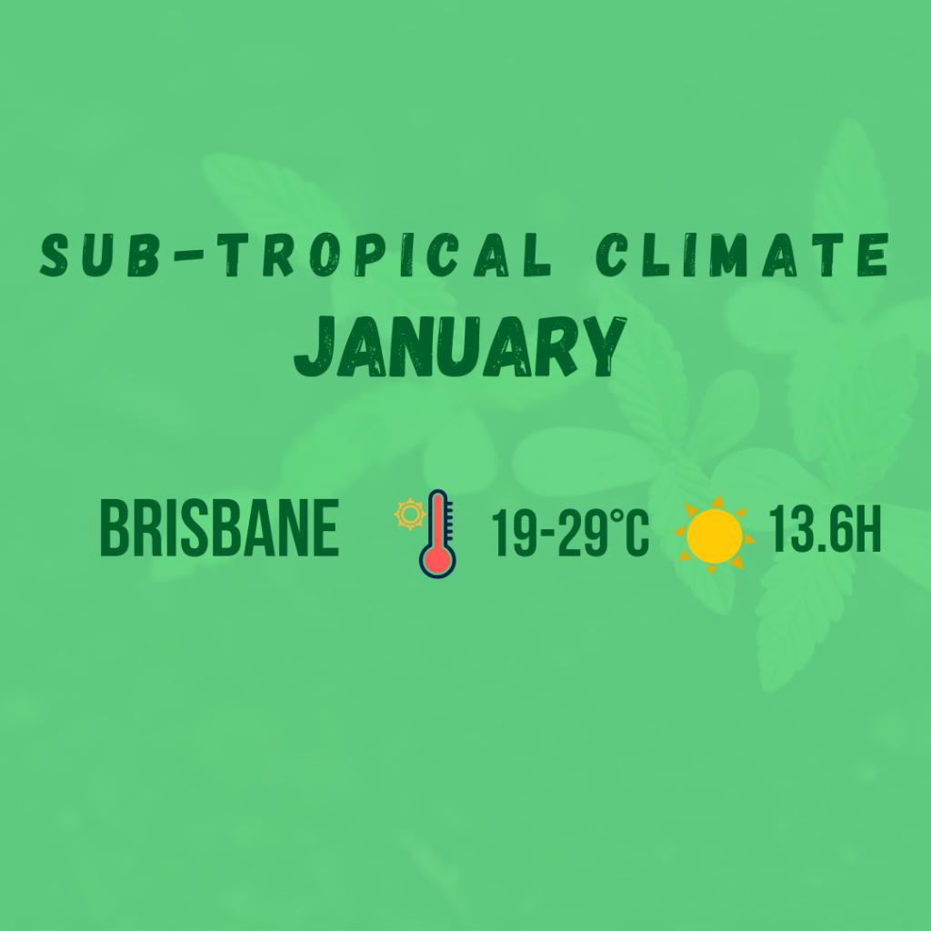 sub tropical climate diagram 4