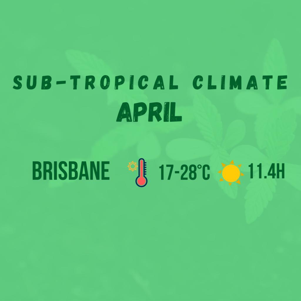 sub tropical climate diagram