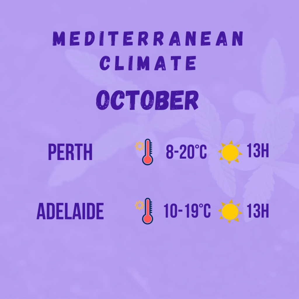 mediterranean climate diagram 7