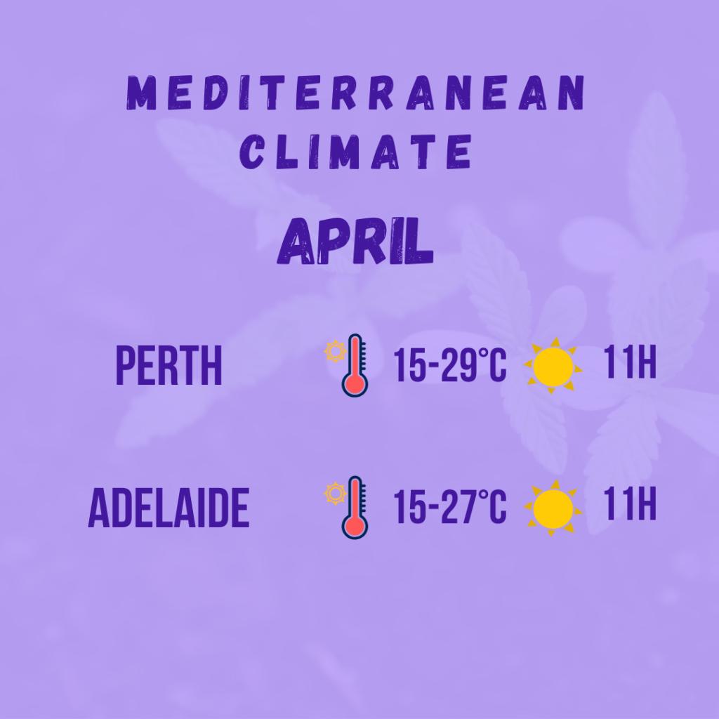 mediterranean climate diagram