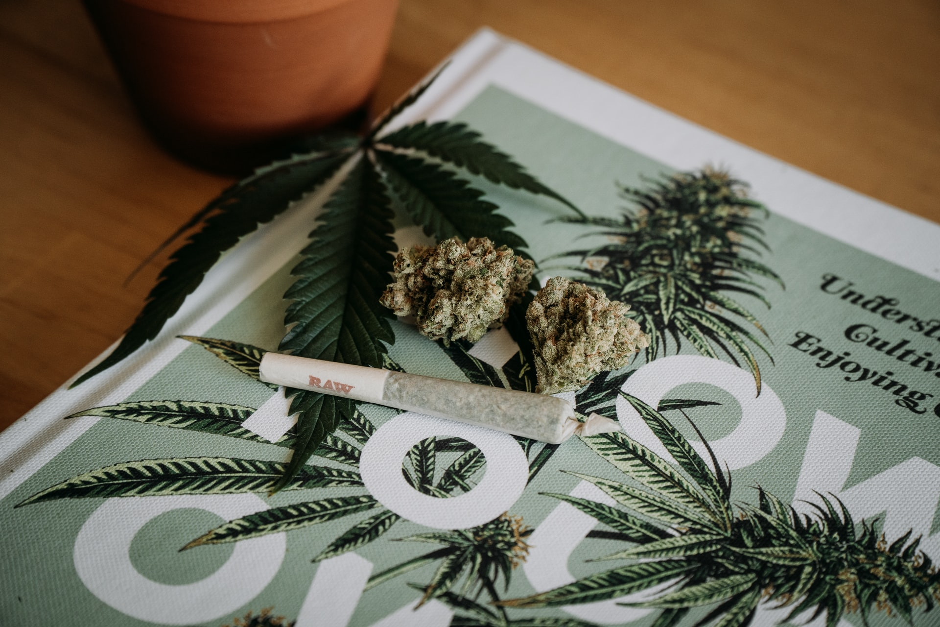 joint and buds sitting on magazine cover