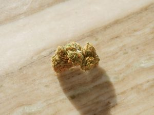 cannabis bud on wooden surface