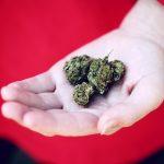 Cannabis Drug Now on Australian Pharmaceutical Benefits Scheme