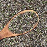 Increasing Demands for Hemp Seeds but We Need More Education on Difference Between Cannabis