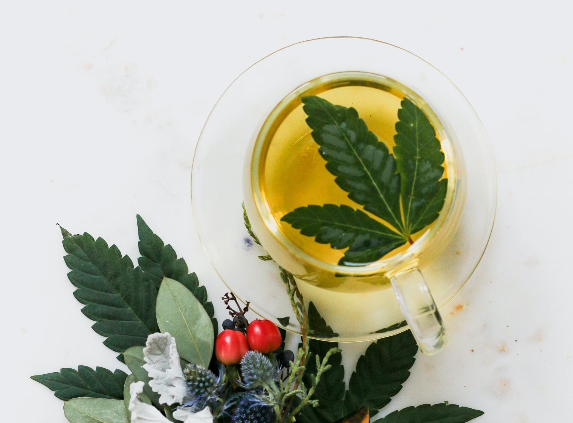 marijuana leaf in glass of tea