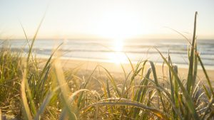 beach sunset in australia
