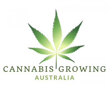 Cannabis Growing main logo